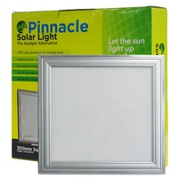 Pinnacle 300 Solar Light